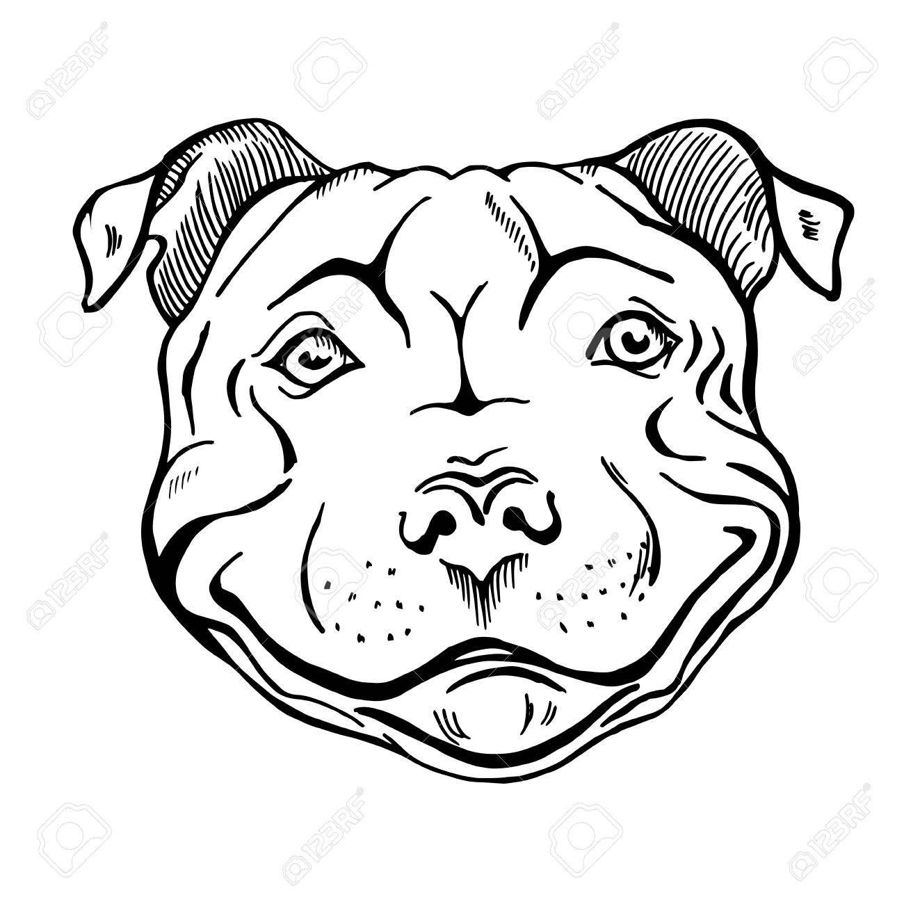 1300x1300 Pit Bull, Smiling Dog Face, Portrait, Sketch, Black And White
