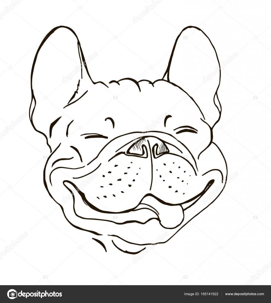 917x1024 Happy Face Of A French Bulldog Stock Vector Minyanna