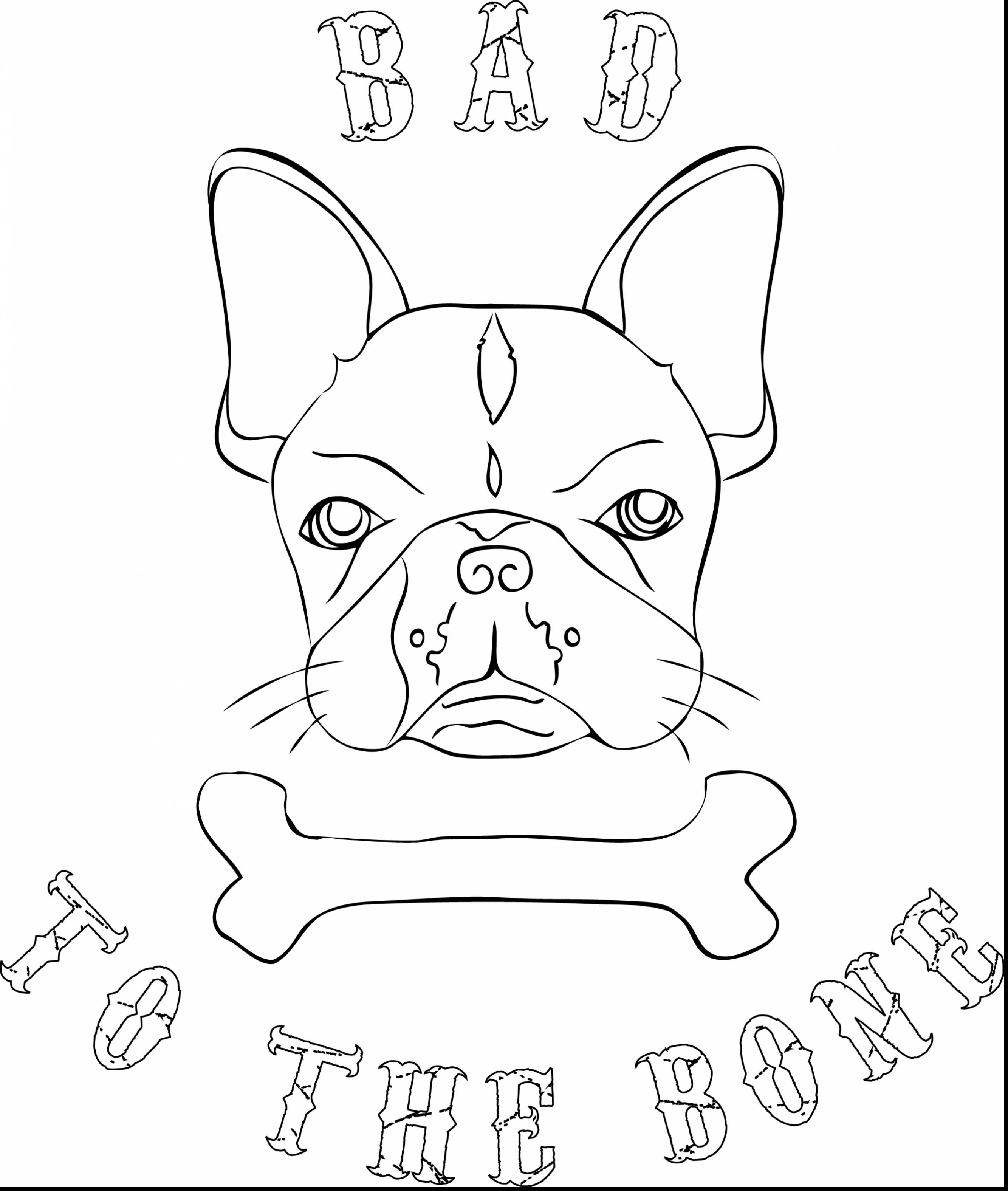 2667x3151 Outstanding French Bulldog Line Drawing With Bulldog Coloring