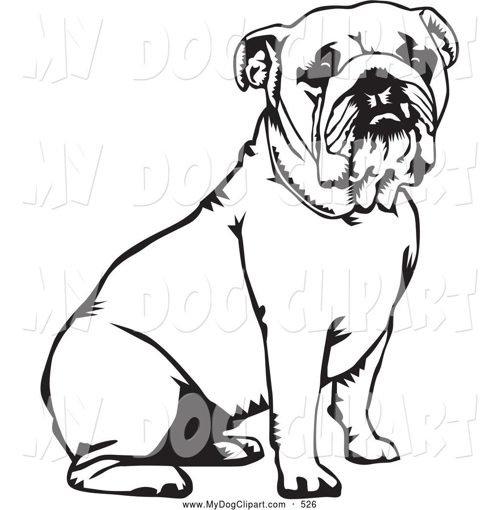 Bulldog Line Drawing at GetDrawings