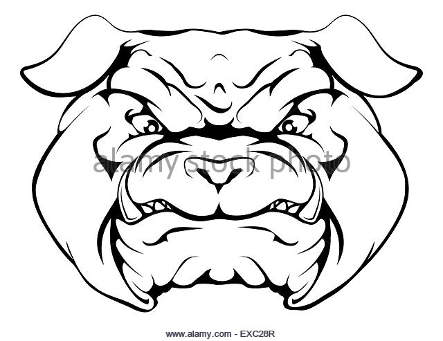 640x493 Bulldog School Mascot Stock Photos Amp Bulldog School Mascot Stock