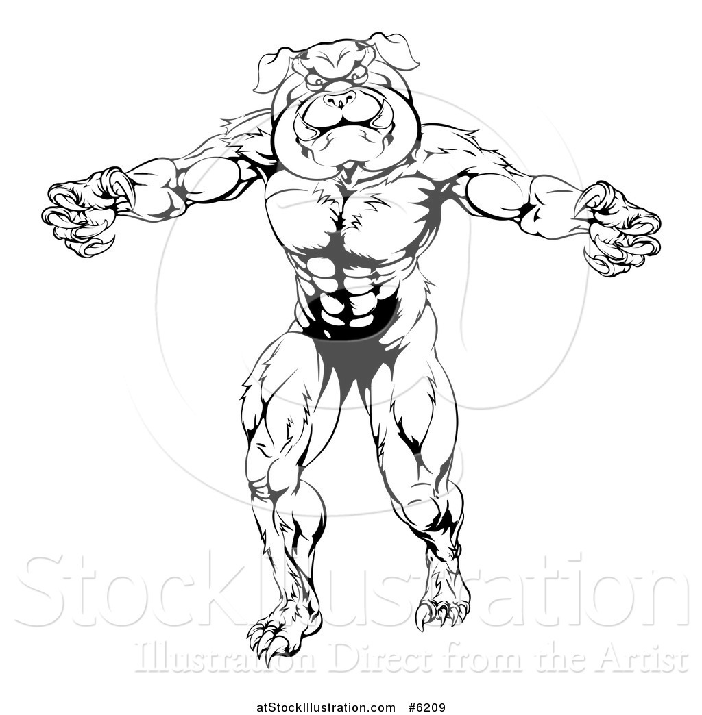 1024x1044 Vector Illustration Of A Black And White Angry Muscular Bulldog