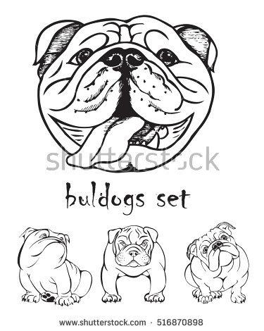 375x470 Drawn Bulldog Black And White