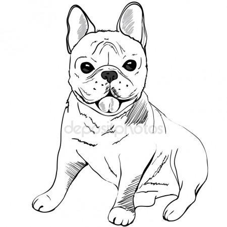 450x450 Cute French Bulldog Stock Vector 89534886399@mail.ru