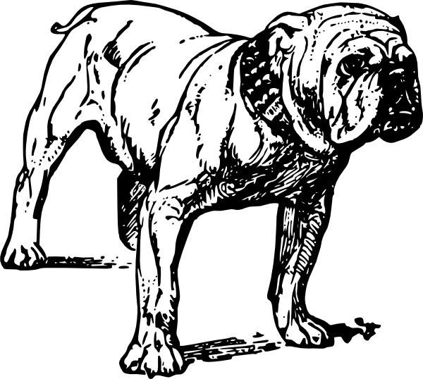 600x538 Bulldog Clip Art Free Vector In Open Office Drawing Svg ( Svg