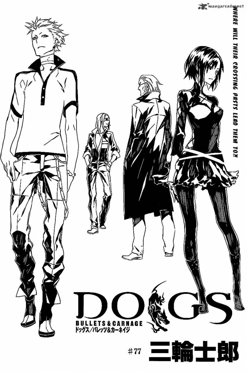800x1203 Bullets Carnage77dogs Bullets