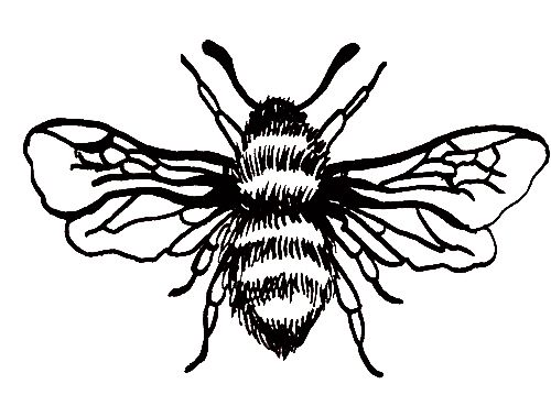 500x359 86 Best Manchester Worker Bee Images On Bees, Tattoo