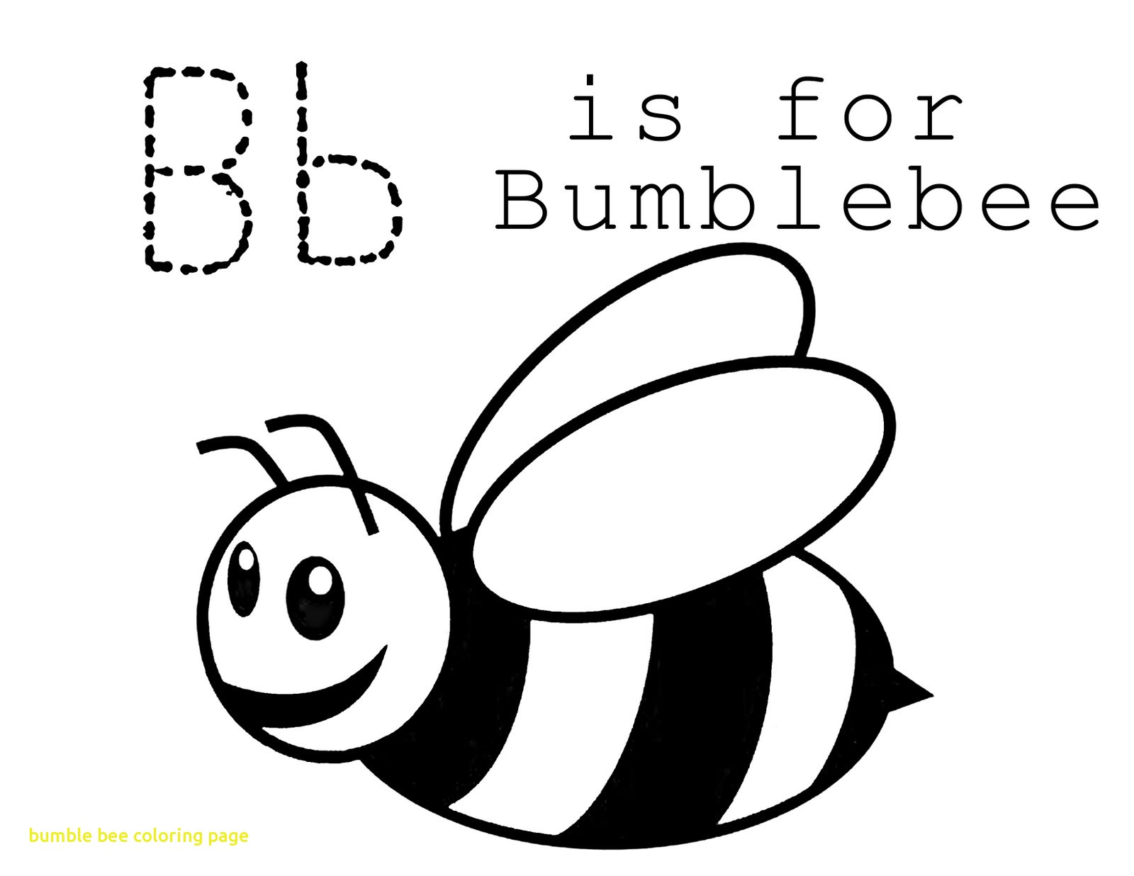 1600x1236 Bumble Bee Coloring Page With Printable Bumble Bee Coloring Sheet