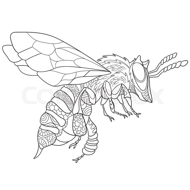 Bee Sting Coloring Page - Worksheet & Coloring Pages