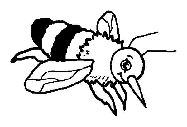 Captivating 600x406 Wonderful Bumble Bee Coloring Pages Top Colori