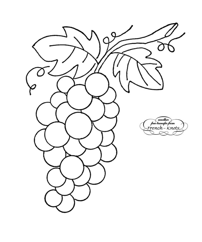 800x961 Bunch Of Grapes Embroidery Transfer Pattern