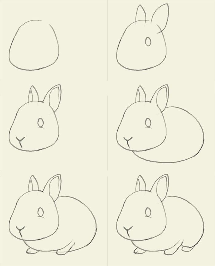 700x865 How To Draw Bunny