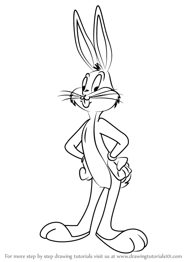 598x844 Learn How To Draw Bugs Bunny From Animaniacs (Animaniacs) Step By