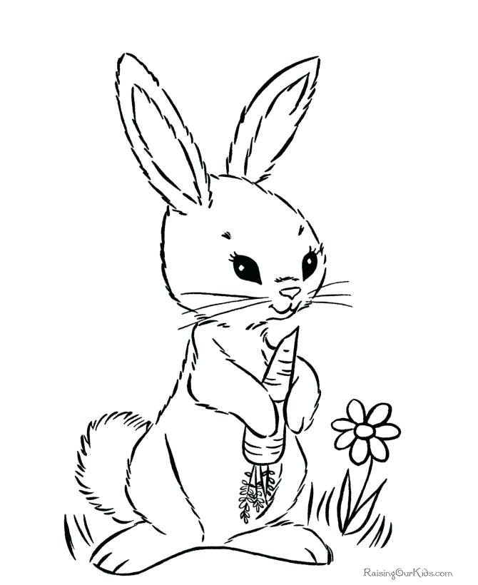 670x820 This Is Bunny Coloring Page Images Who Love Spring Flowers Baskets