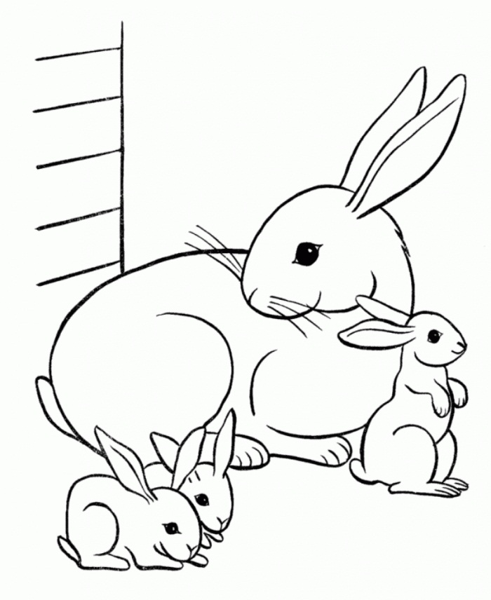 700x856 Printable Rabbit Coloring Pages Me