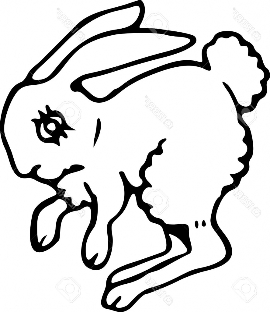 888x1024 Simple Bunny Drawing Simple Blacknd White Line Drawing