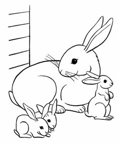 236x288 Drawing A Bunny Rabbit Drawing Of Bunny Rabbit Clipart Best