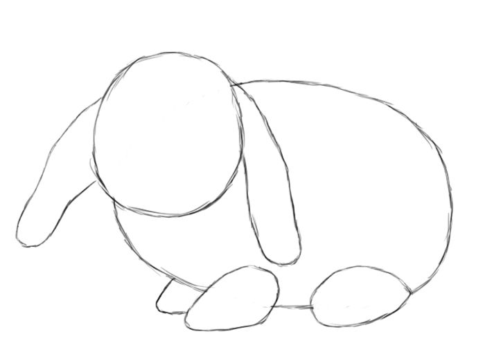 700x525 How To Draw A Bunny Bunny, Rabbit And Rabbit Drawing