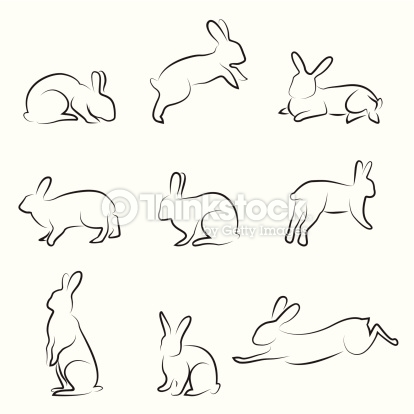414x414 Rabbit Drawing Set Draw Rabbit Drawing, Drawings