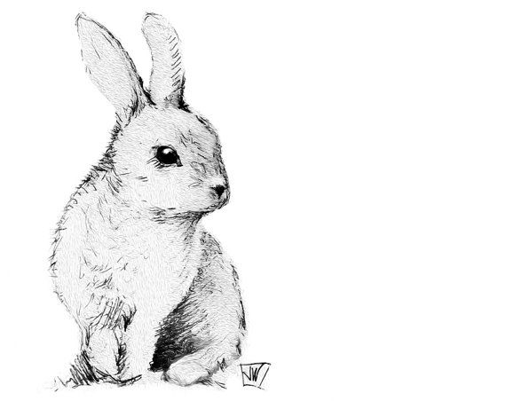 570x452 Bunny Rabbit Instant Download. Printable Art. Diy Iron On By