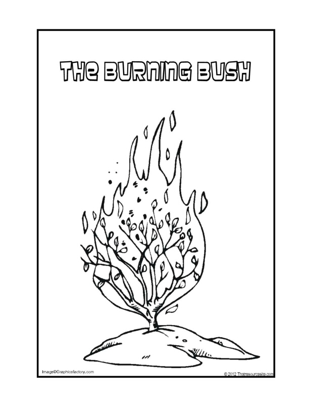 Burning Bush Drawing