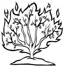 222x227 Make A Joyful Color Moses The Burning Bush Bible Moses