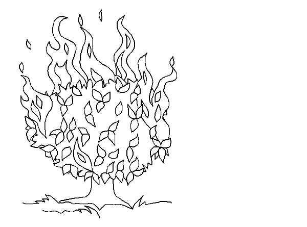 600x445 Moses Story Of Burning Bush Coloring Pages