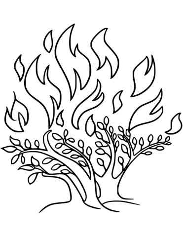 371x480 The Burning Bush Coloring Page Free Printable Coloring Pages