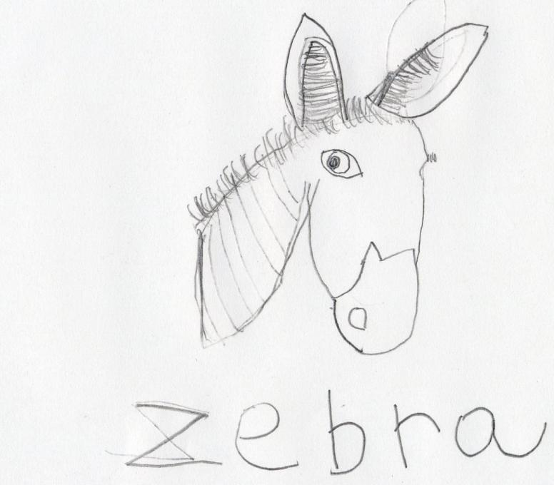 Burro Drawing At Getdrawings Com Free For Personal Use Burro