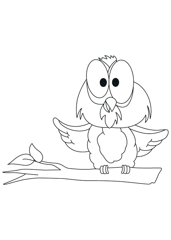 600x842 Snowy Owl Coloring Pages Snowy Owl Coloring Page Burrowing Owl
