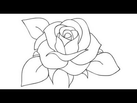 480x360 How To Draw A Rose Step By Step Video Drawing Roses