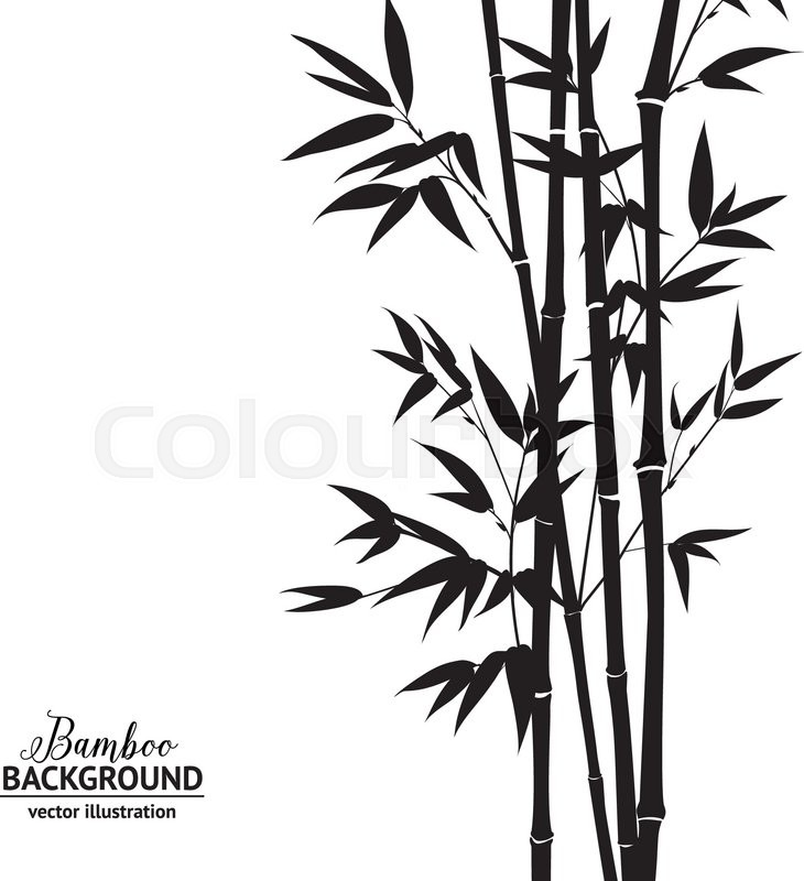 730x800 Bamboo Bush, Ink Painting Over White Background. Vector