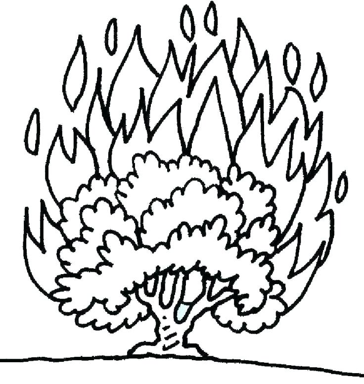 736x776 Burning Bush Coloring Page See Burned