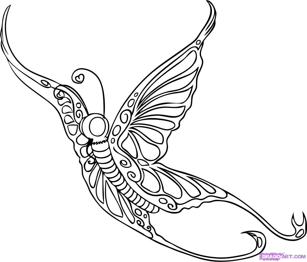 1254x1071 Drawn Butterfly Flight Drawing