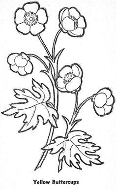 236x386 Cartoon Eyes Drawing Royalty Free Cliparts, Vectors, And Stock