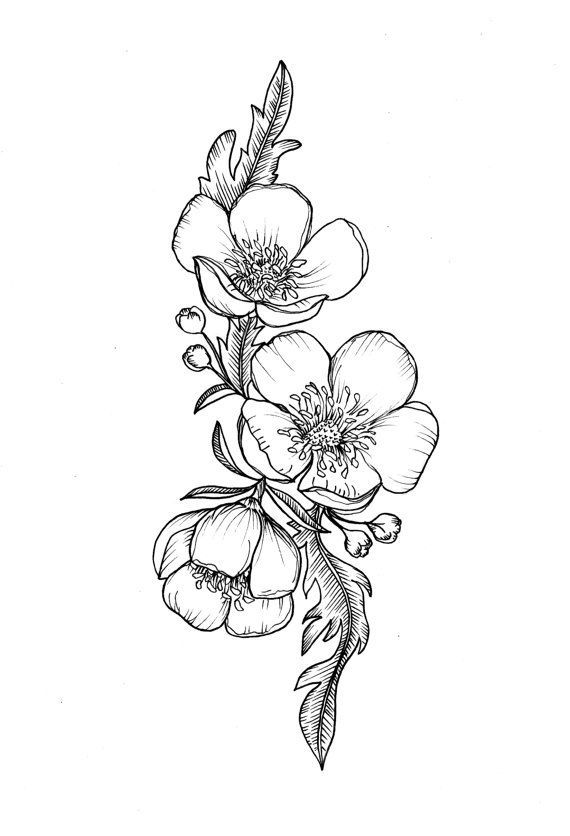570x836 Custom Buttercup Illustration Tattoo For Greer By Themintgardener