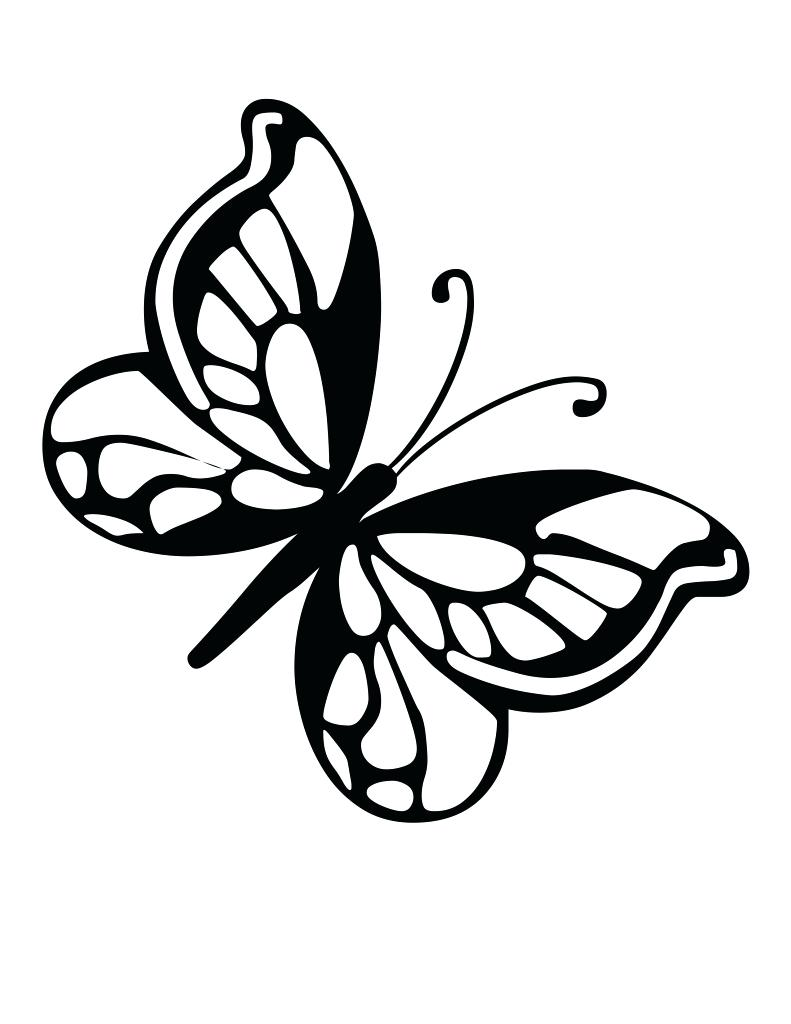 Butterflies For Kids Drawing