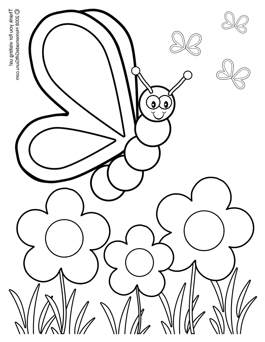 850x1100 Coloured And Complete Drawings Of Butterflies And Flowers