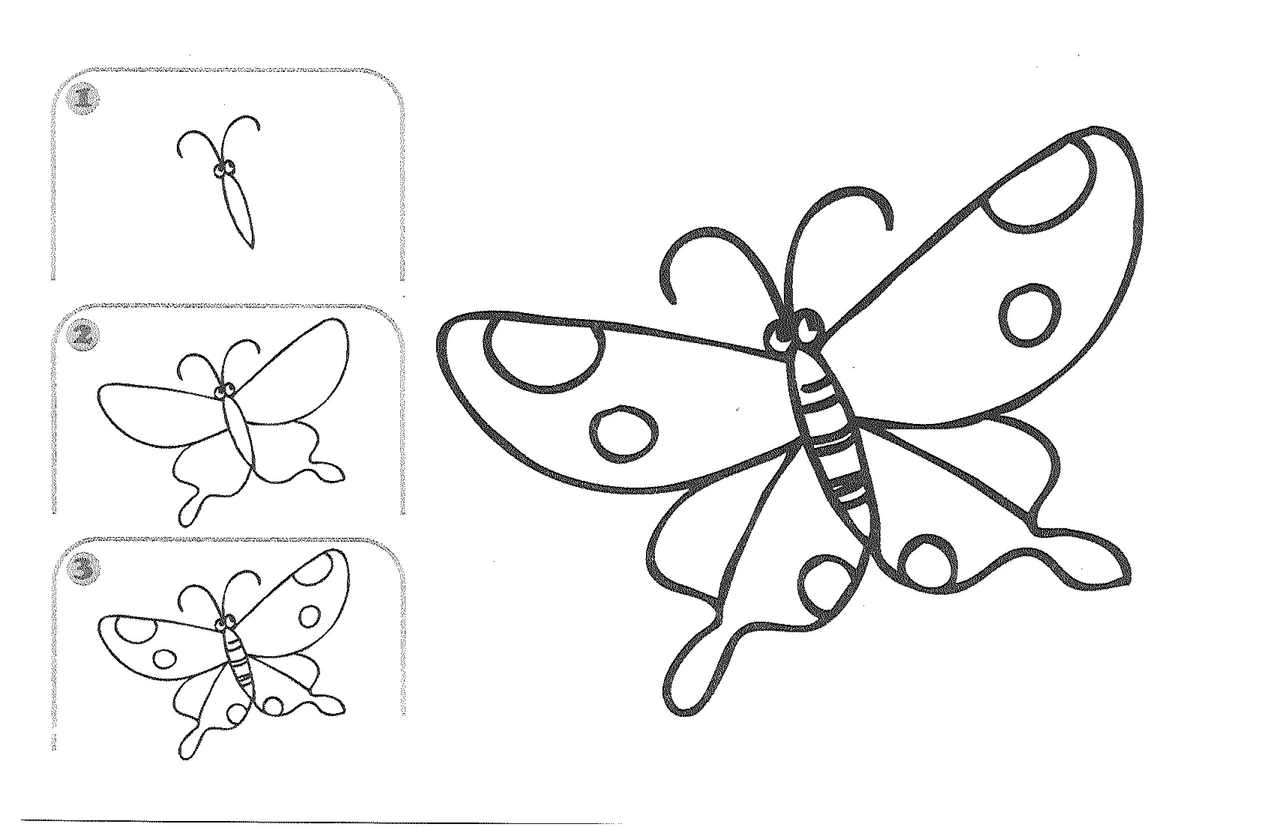 2550x1656 Drawing A Butterfly Step By Step Drawings By Kids Kids Learn
