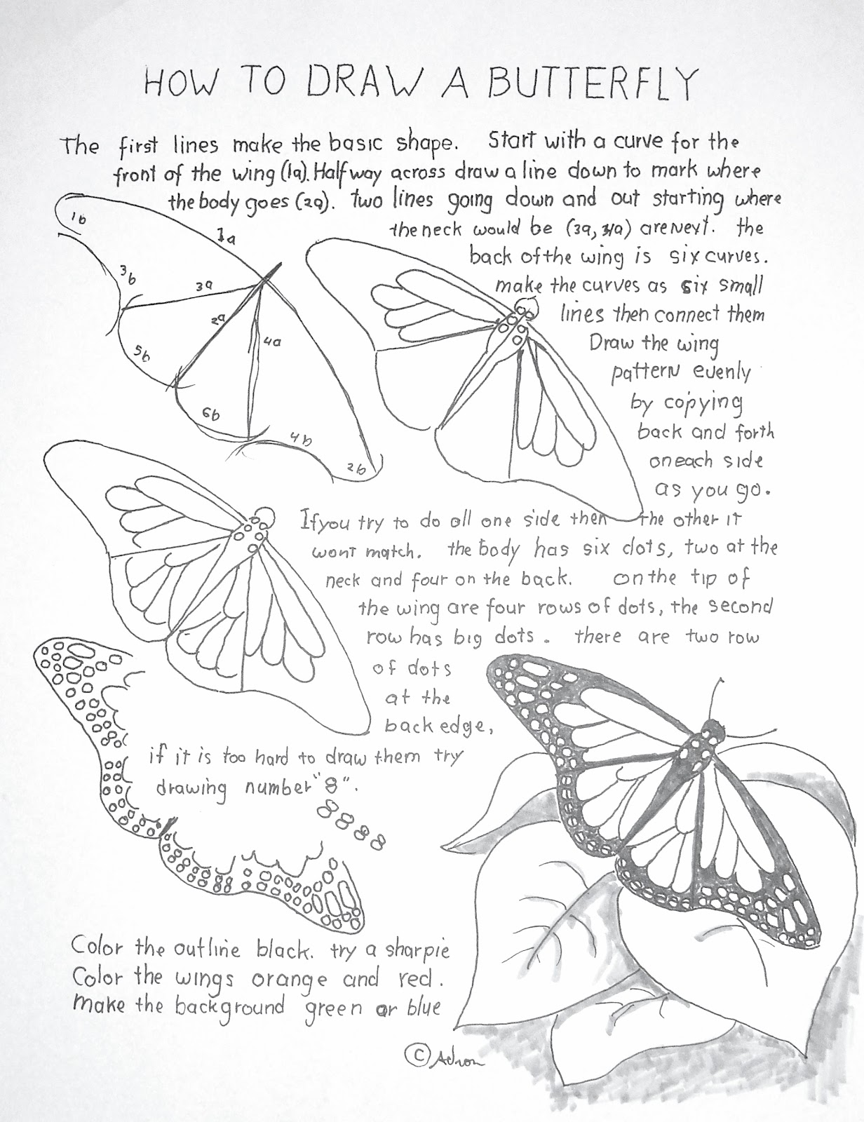 1232x1600 How To Draw A Monarch Butterfly Penink Winged