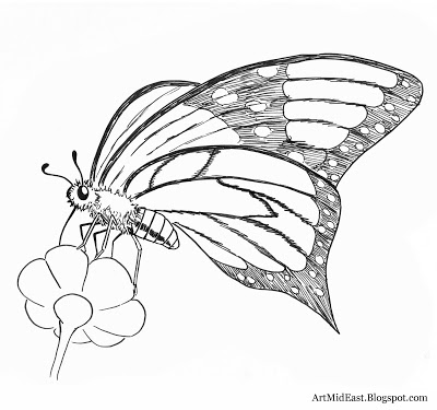 400x375 How To Draw A Butterfly Step By Step Drawing Lessons