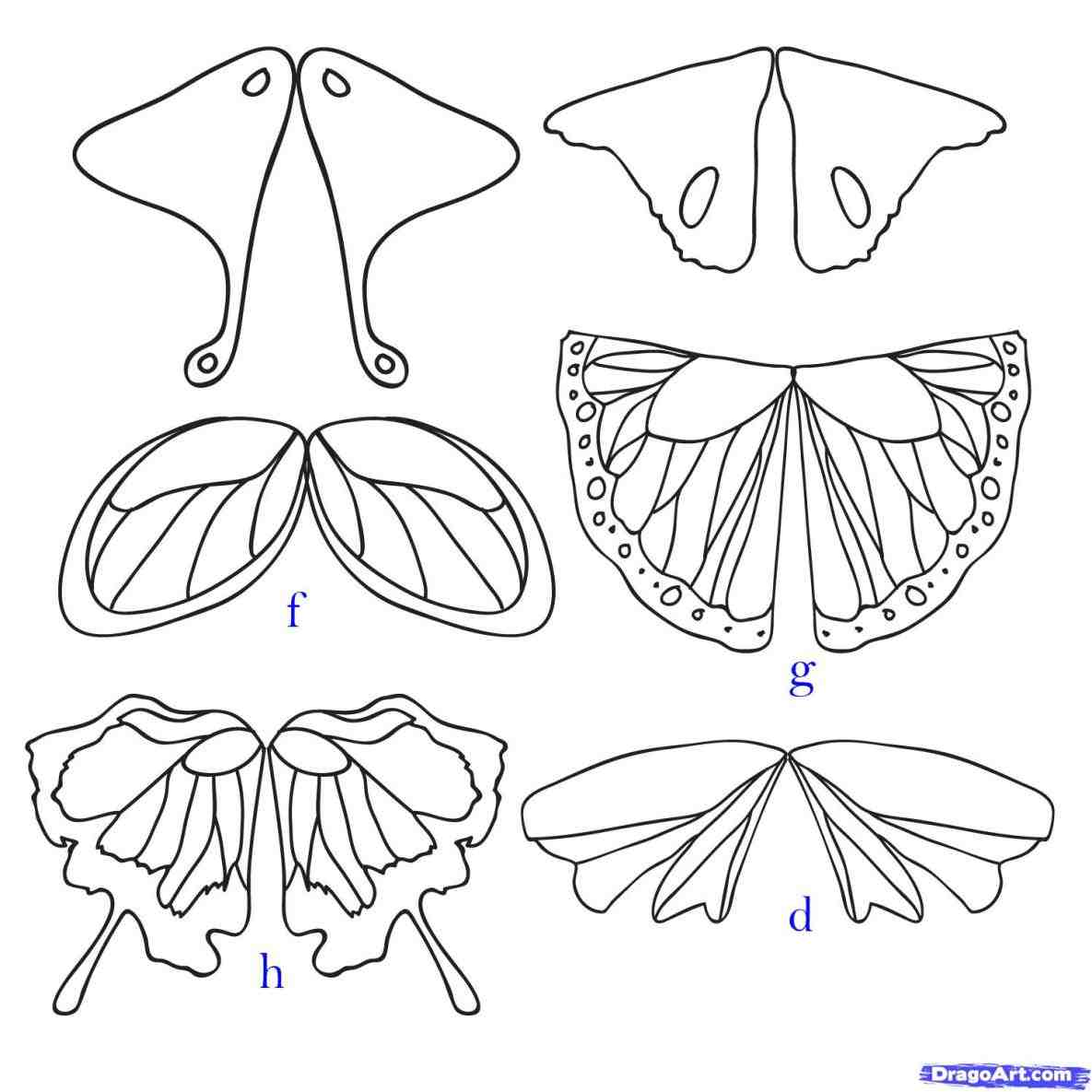 1185x1185 Easy Drawings Of Butterflies Step By Step