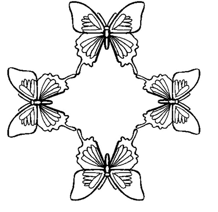 Butterflies To Print Drawing