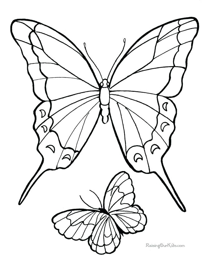 670x820 Butterfly Prints Free Free Botanical Vintage Butterfly