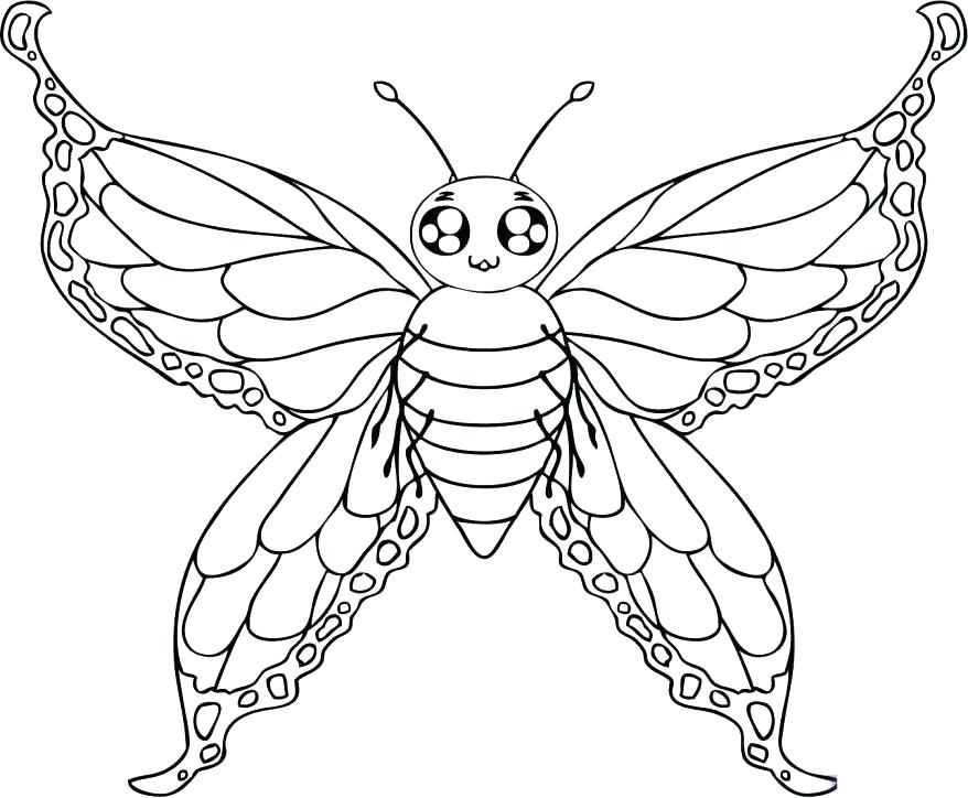 878x724 Printable Pictures Of Butterflies To Color Printable Butterfly