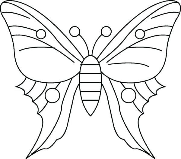 600x529 Monarch Butterfly Coloring Page Murs