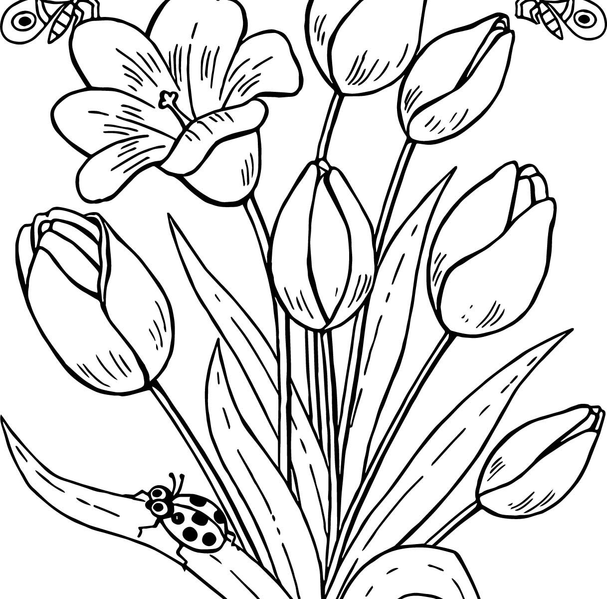 1217x1200 Printable Butterflies And Flowers Coloring Pages Free Cartoon For
