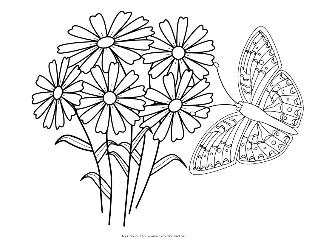 1056x816 Butterfly And Flower Coloring Pages