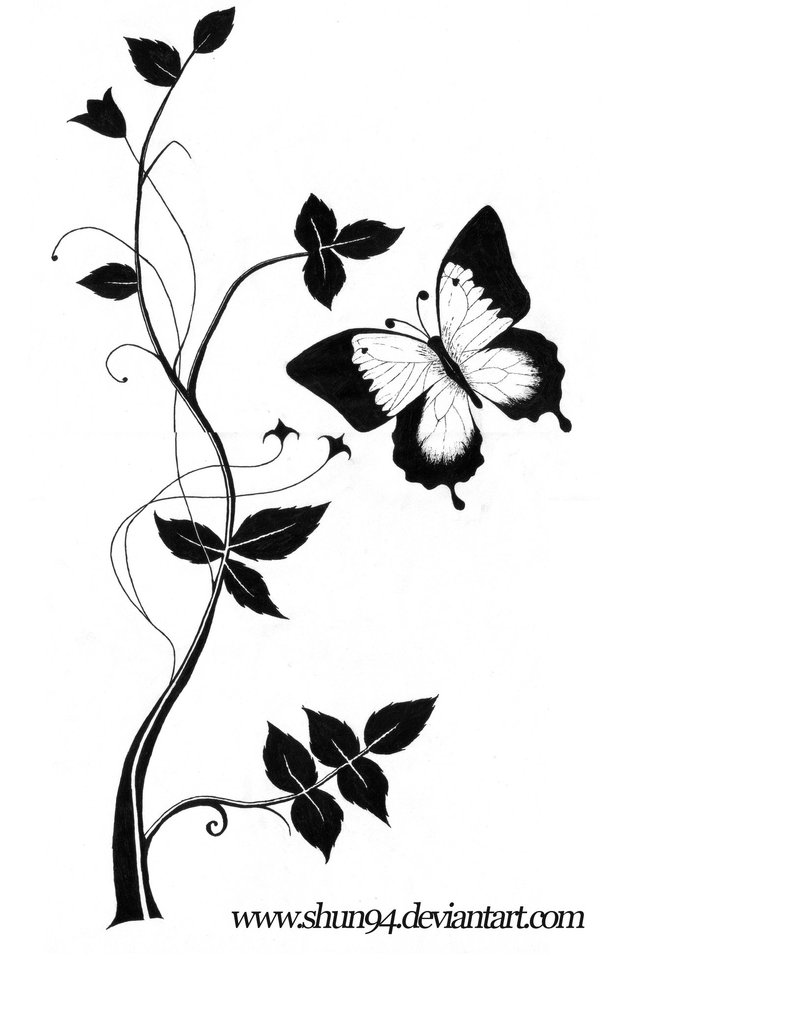 Butterfly Black And White Drawing At Getdrawings Com Free For