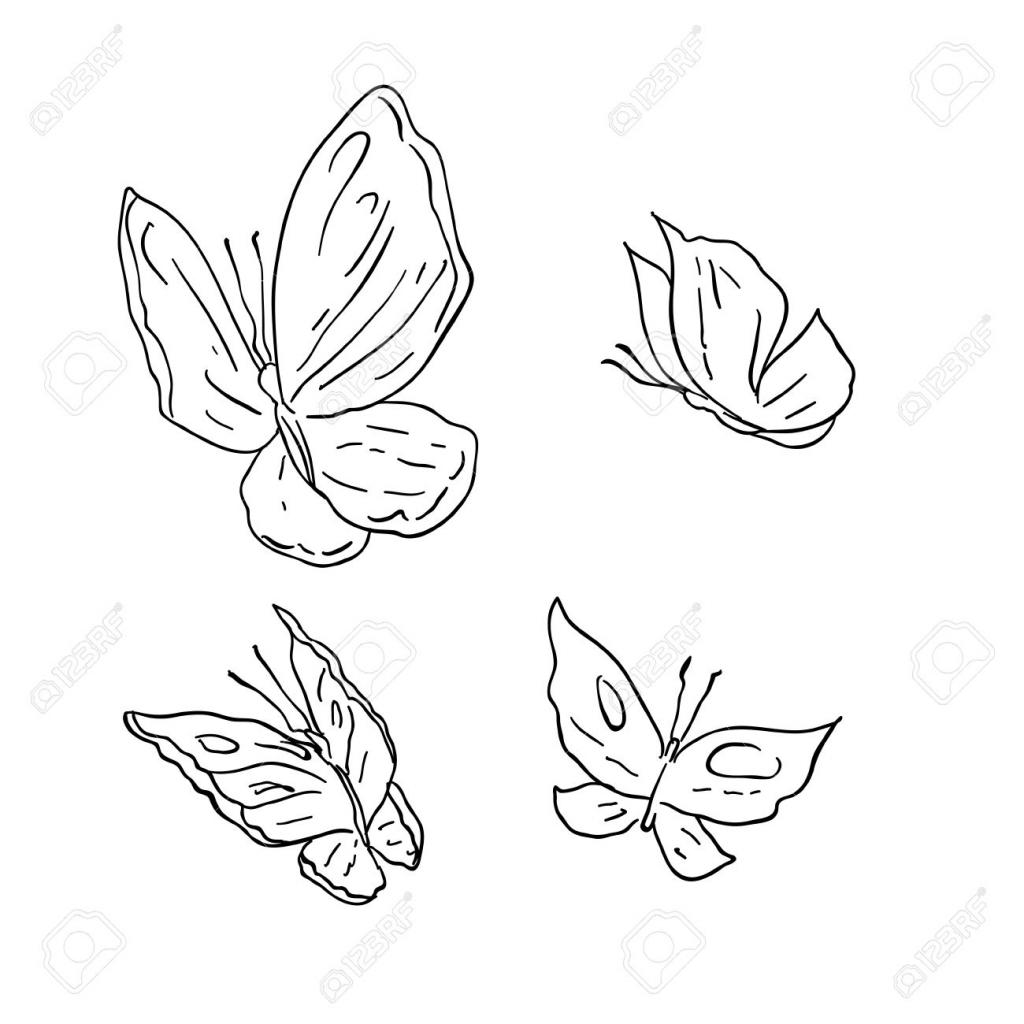 1024x1024 Cartoon Butterfly Drawings How To Draw Black Butterfly Cartoon 2